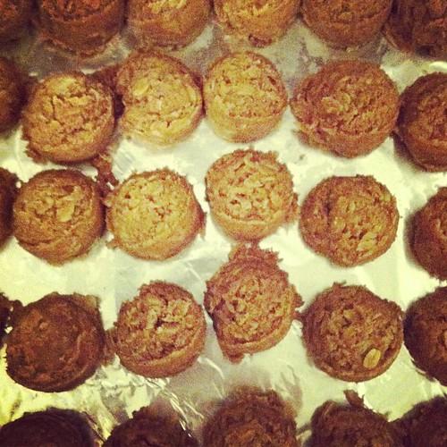 Healthy peanut butter bites: PB + honey + oats + powdered milk + wheat germ.  Yummy and sugar free.