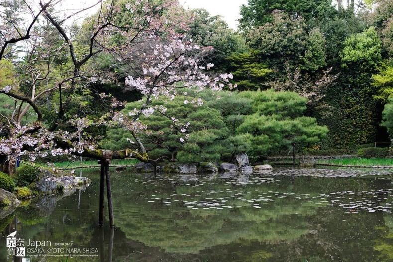 Japan-0507