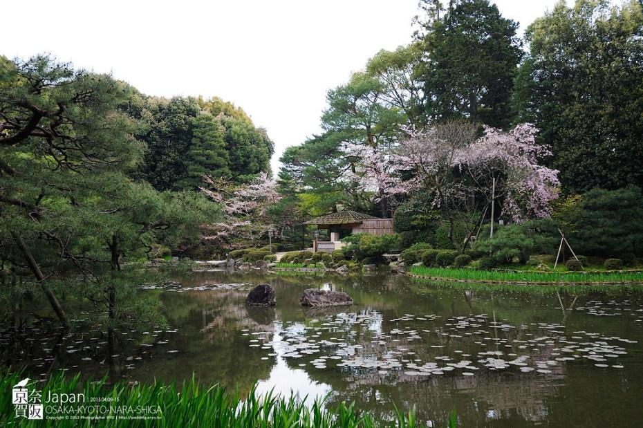 Japan-0512