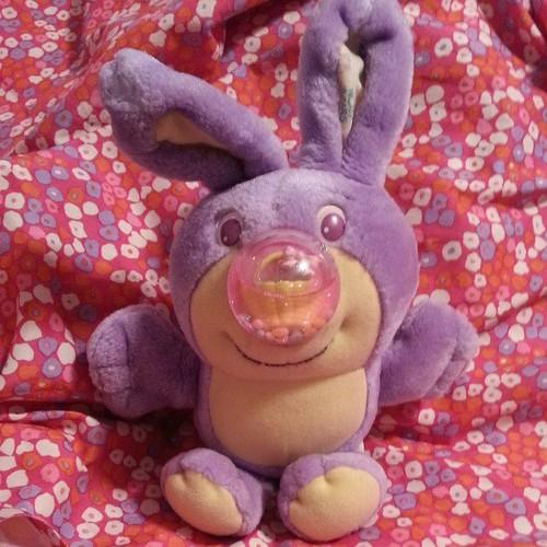 Nosy Bunny!!