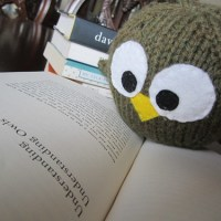 Owl Updates