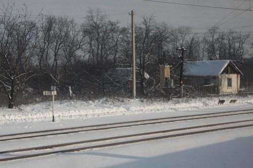 '1118km' post on the Ukrainian Railways