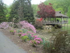 Teahouse in Spring 3