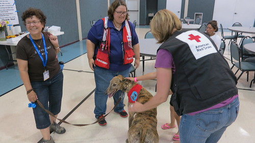 Red Cross response in Granbury & Cleburne