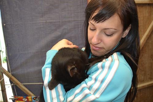 Voluntaria sostiene a gato enfermo