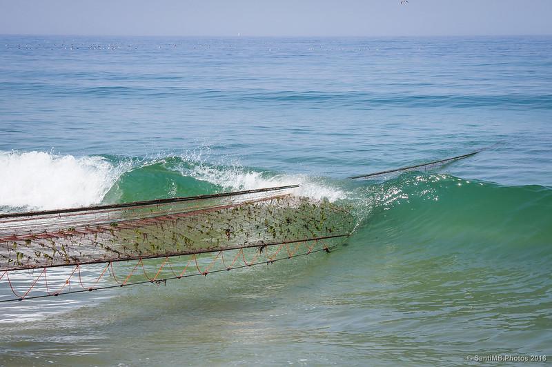 Rompiendo la ola (26/50)