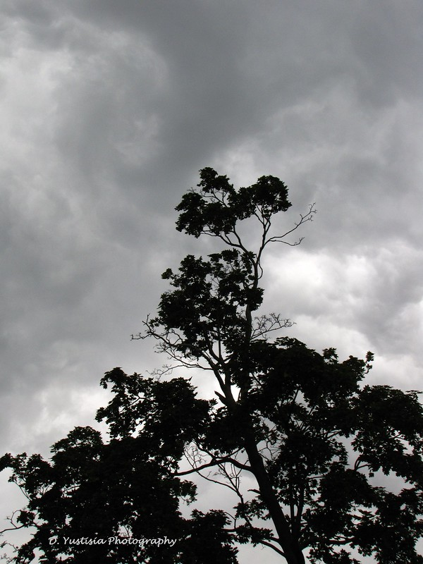 ominous-cloud4