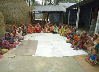 Focus group discussion from  strengthening the dairy value chain (SDVC) project in Bangladesh
