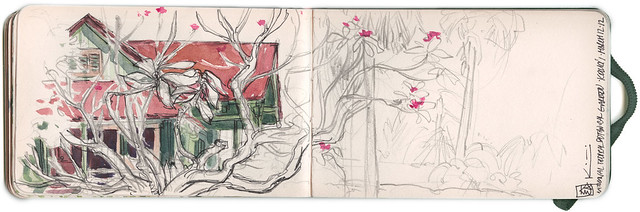 Sketchbook ~ National Botanical Gardens 1