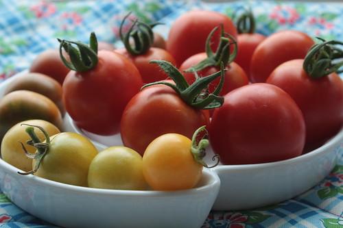 Nice Tomatoes