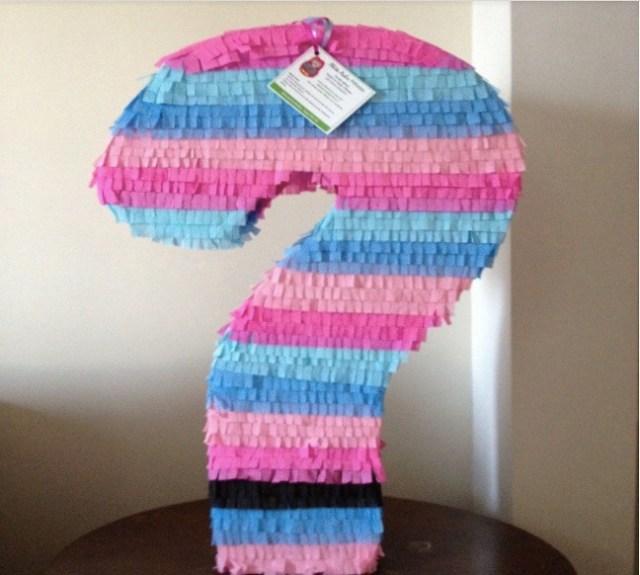 gender reveal pinata blauw roze zwanger