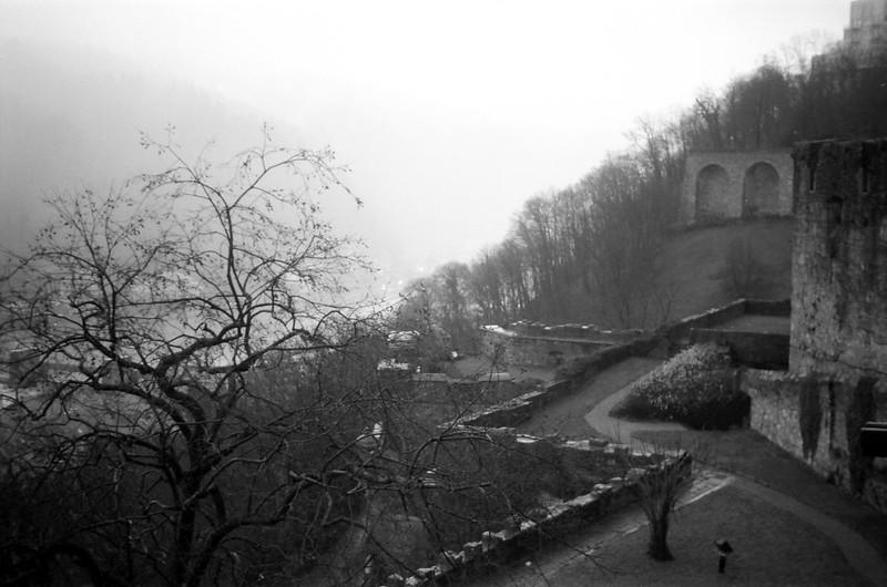 Heidelberg Castle - Film: TMax100