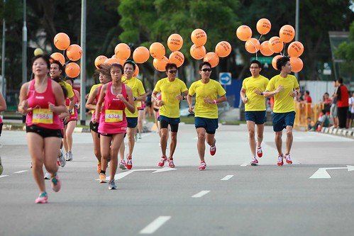 SHAPE RUN 2012-15