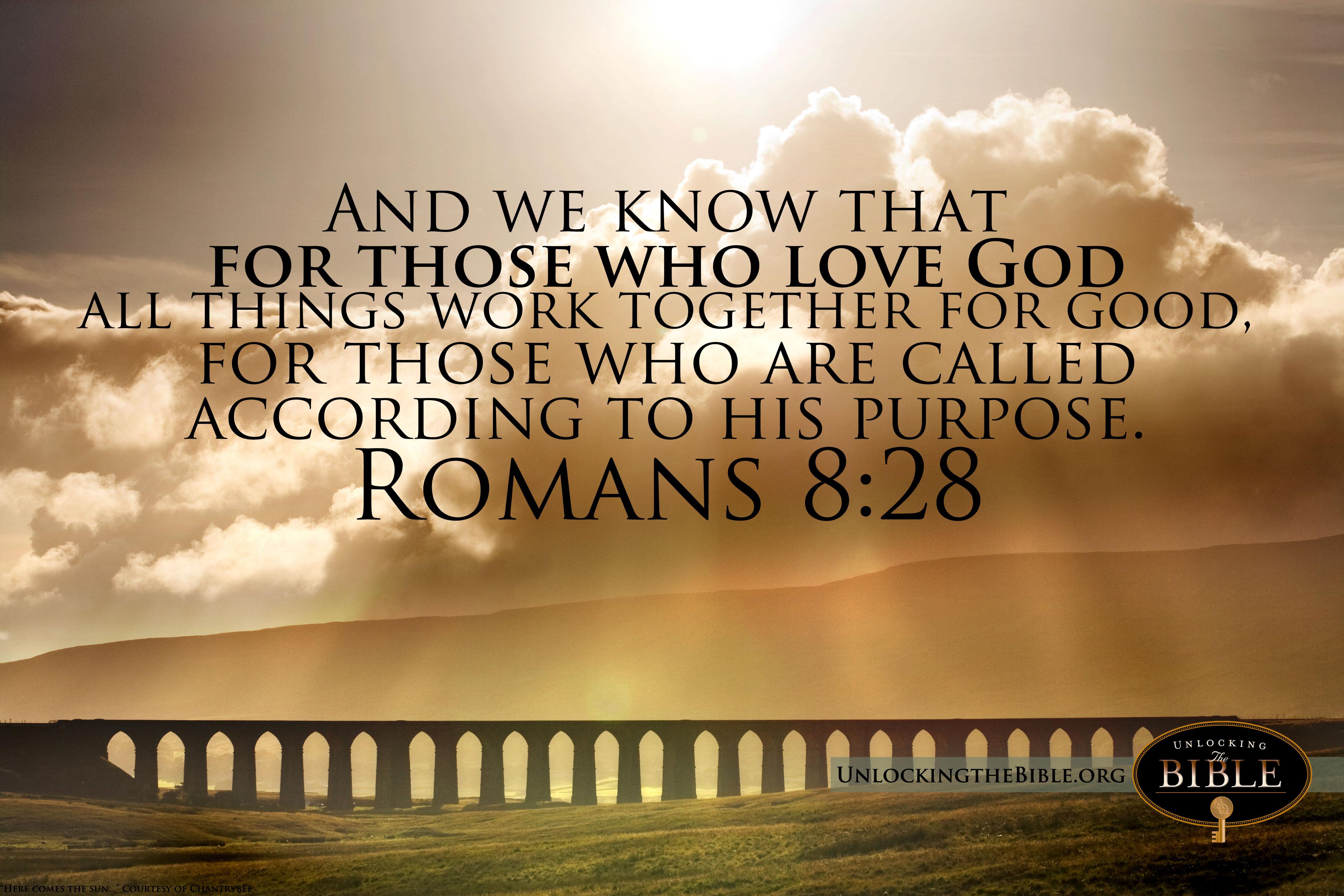 Live Life Fullest Bible