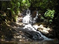 336ª Trilha Guampa + Massas + Imigrante + Pompéia + 5 Cachoeiras - Silveira Martins RS_007