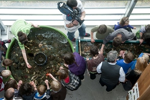 1 Beachcombers School and Bruce Williams Visit touch tanks