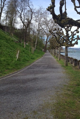 walking in Rapperswil