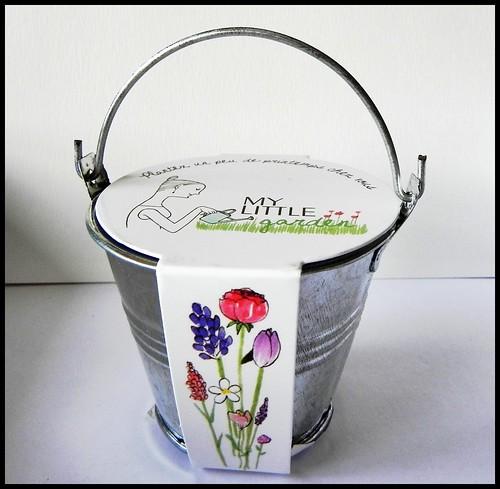 spring box 5