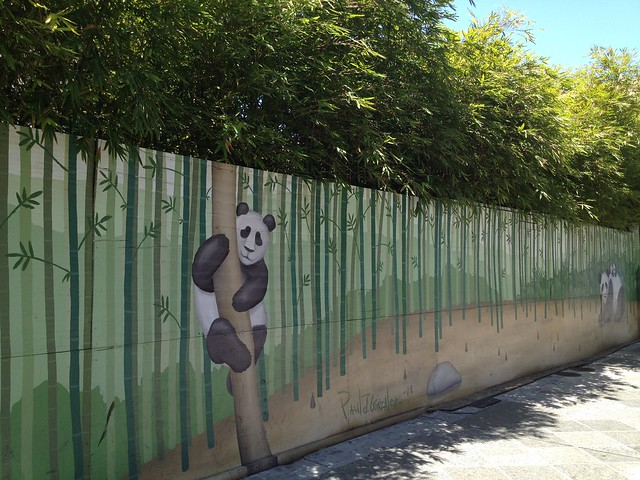 "Panda ""bear"" and bamboo fence mural"