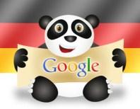Panda Refresh January 2013 Update
