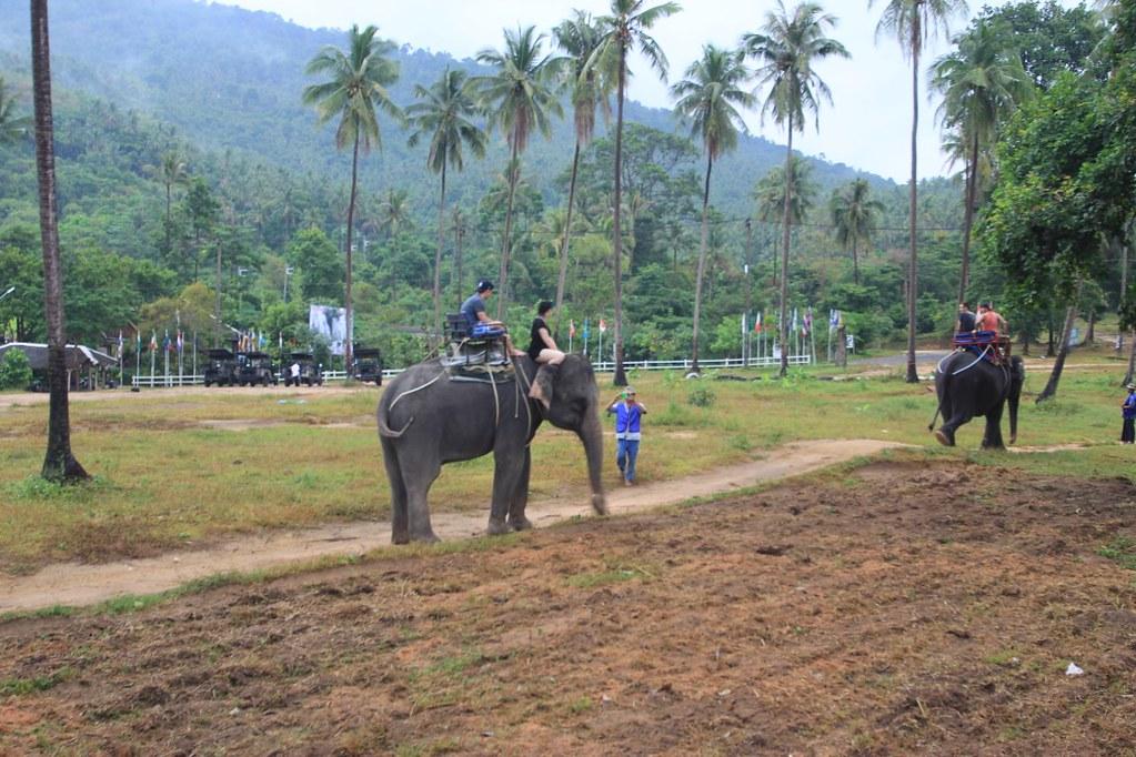 Elephant Rides- Koh Samui, Thailand