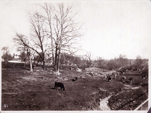 Patterson Farm by Dayton Metro Library Local History, on Flickr
