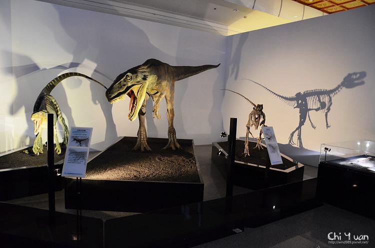 地球最古老的恐龍展19.jpg