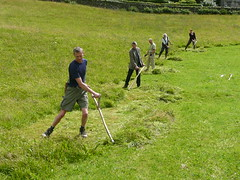 Scythes on Countryfile