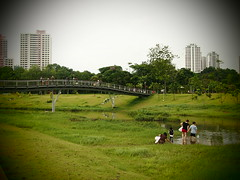 Bridge, Naturalised River, Bishan Park 2