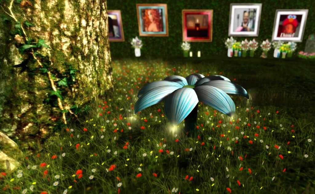 American Cancer Society in SL: at the ACS Memorial Garden