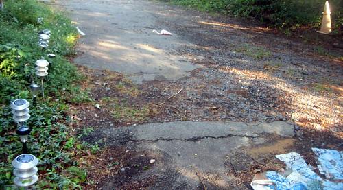 20120630 0658 - storm damage while yardsaleing - flamingo casualty - IMG_4490