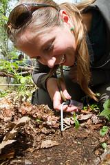 Collecting Soil Invertebrates