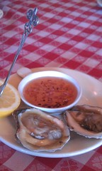Camillo oysters