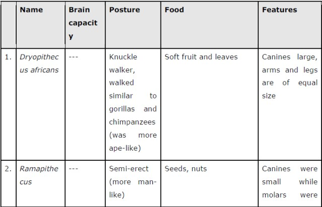 NCERT Solutions Class 12 Biology Chapter 7: Evolution