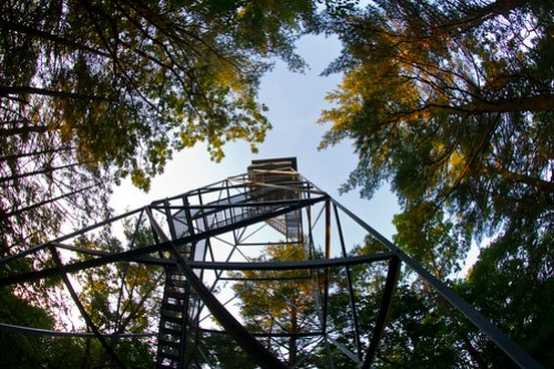 orenaug fire tower woodbury