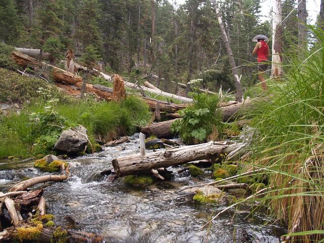 South Fork stream