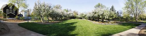 lilacia park seating
