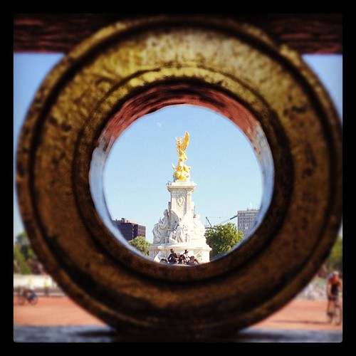 peeking through Buckingham fence