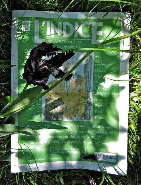 L'Indice dei Libri, maggio 2012