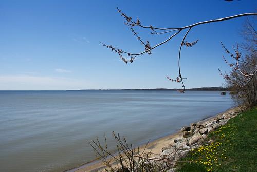 Lac St-Pierre (St-Laurent River)