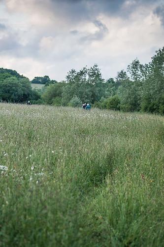 YCC Sutton Bingham Walk 6