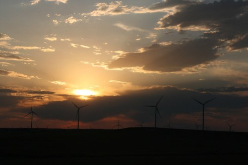 Windmills are a common view for this area the sunset makes them look pretty
