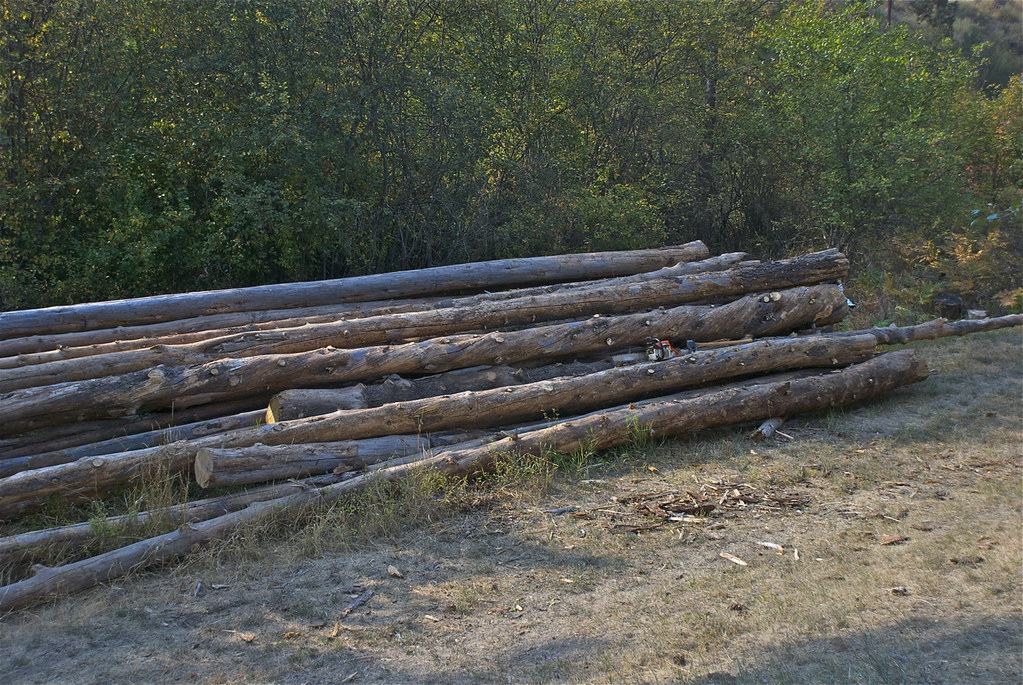 Firewood log deck