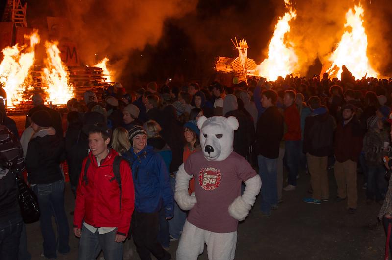 polar_bears_and_fire