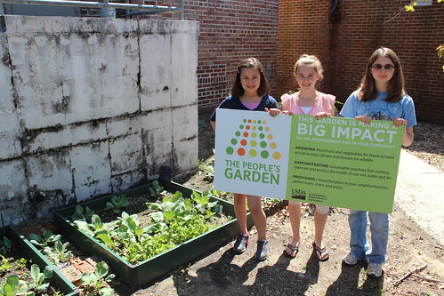 Students at Woolmarket Elementary have transformed a vacant courtyard into a nucleus of plant activity, ranging from cabbages to coastal grasses.