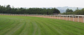 Grass training track in Ireland.