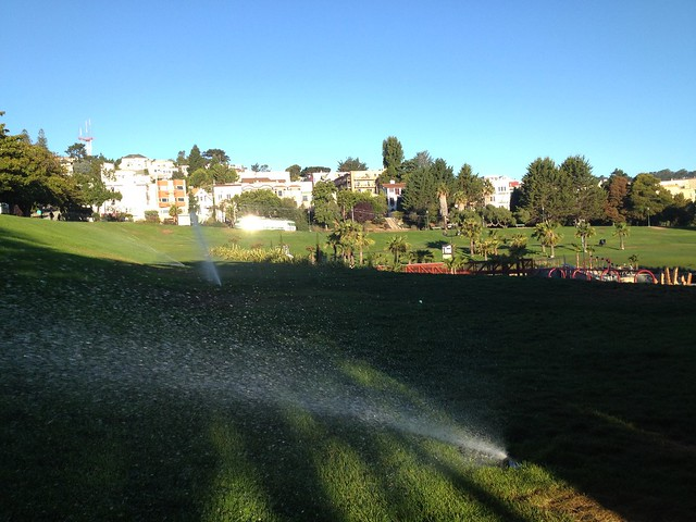 Sprinklers at Dolores Park