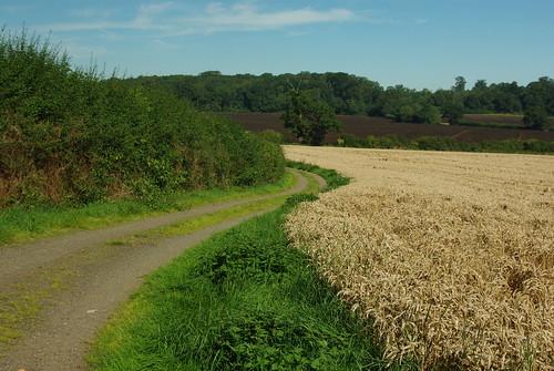 20120908-08_Warwickshire Farmland - Farm Drive by gary.hadden