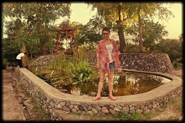 On Lotus Pond