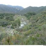 Creek along San Mateo Trail